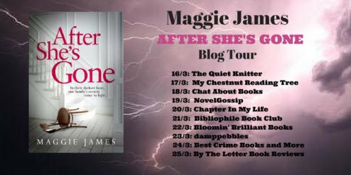 Blog Tour Poster Final