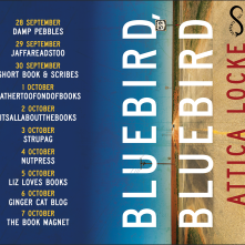BB blog tour image