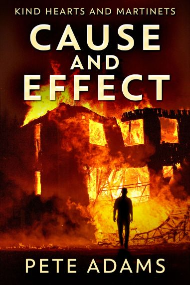Cause and Effect cover