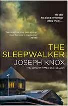 the sleepwalker.jpg