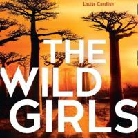 #BookReview: The Wild Girls by Phoebe Morgan @HQstories @1stMondayCrime #TheWildGirls #damppebbles