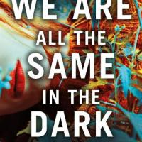 #BookReview: We Are All the Same in the Dark by Julia Heaberlin @PenguinUKBooks #WeAreAlltheSameintheDark #damppebbles